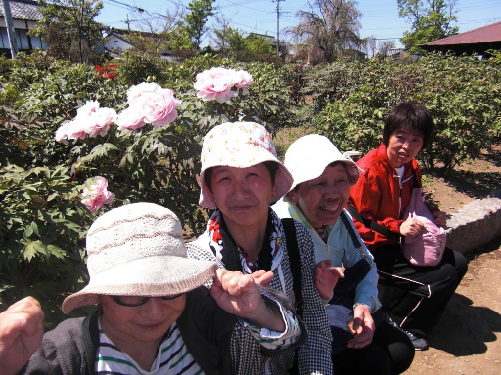 牡丹お花見の会